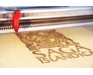 Saga Islandica hout gravure