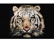 Zeefdruk t-shirt tijger full colour